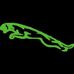 Jaguar Timingset car tools
