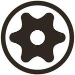 Bit (1/4) Drive T-Star tamperproof (for Torx)