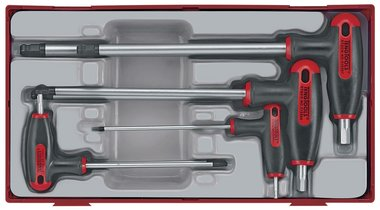 Allen set with t-handle tc-tray 2.5/8mm 7dlg
