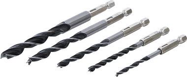 Wood Drill Set 6 - 14 mm 6-point shaft 5 pcs