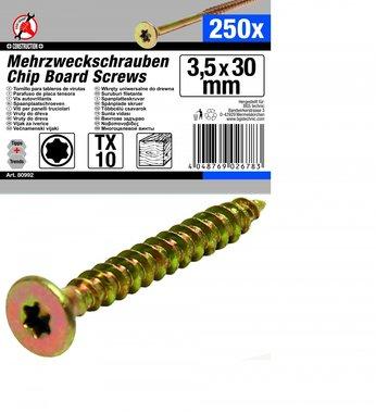 250-piece Multi-Purpose Screws, 3.5 x 30 mm, T10