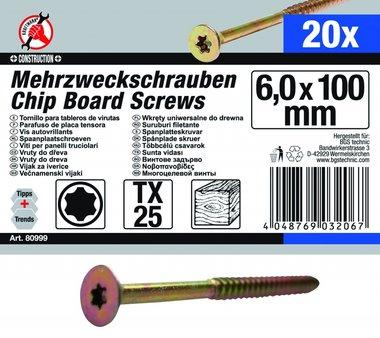 Multi-Purpose Screws, 6.0 x 100 mm, T25, 20 pieces